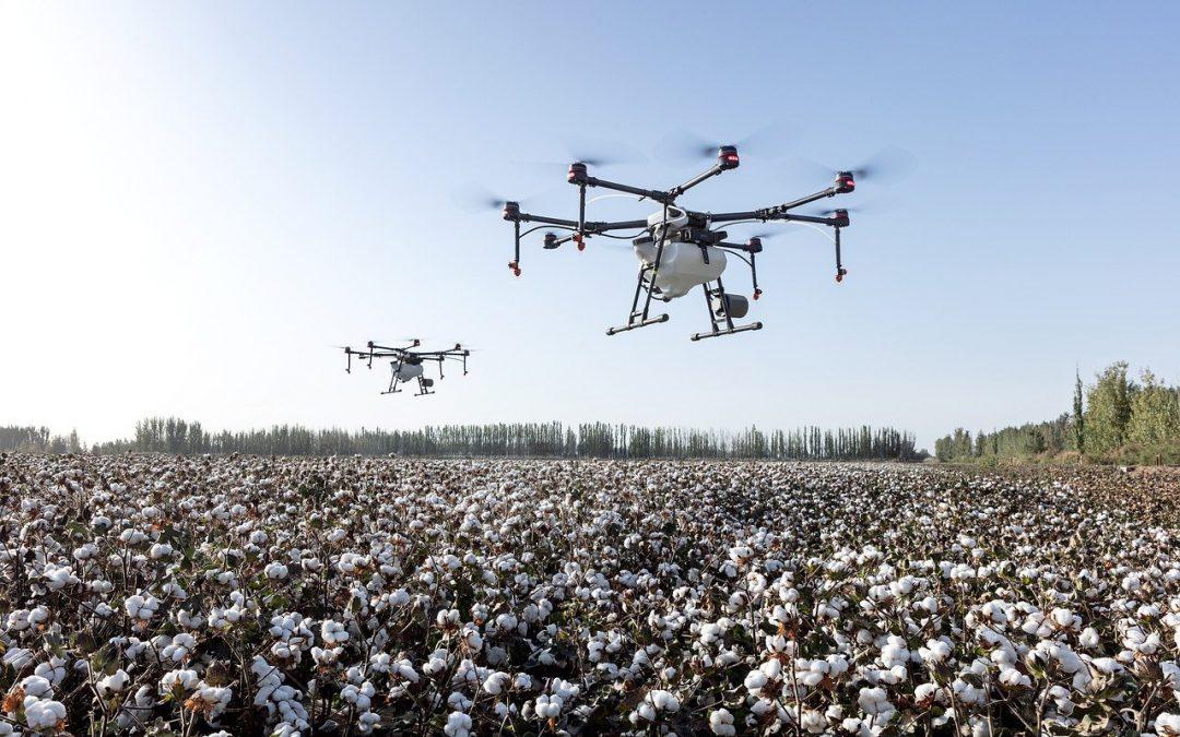 Cómo acelerar proyectos emprendedores agrícolas